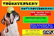 2016.12.03.Kutyaovi_trükkverseny