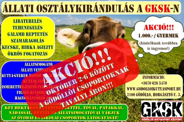 akció_oszt.kir.